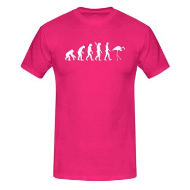 T-Shirt Evolution Flamingo Vogel Pool CSD Keys Florida 13 Farben Herren XS - 5XL – Bild 1