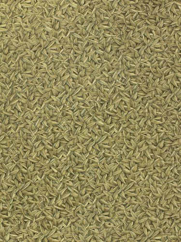 Glööckler wallpaper feather leafs gold gloss 52504 online kaufen