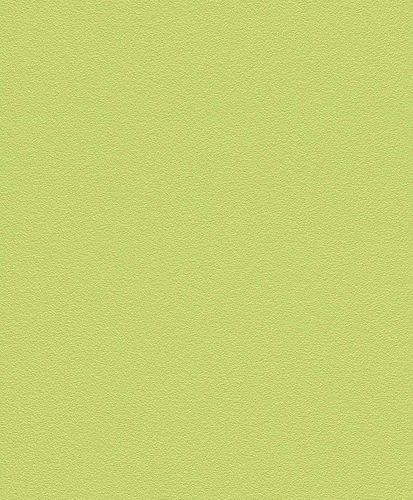 Non-Woven Wallpaper Plain Structured green Rasch 469035