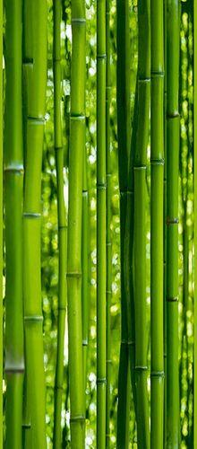 Pop Up Panel 35x250cm selbstklebend Wellness Bambus online kaufen