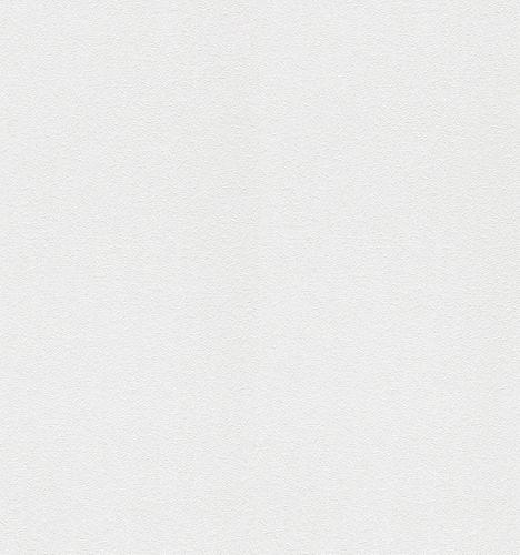 XL Vlies Tapete Überstreichbar Großrolle Rauputz 161311
