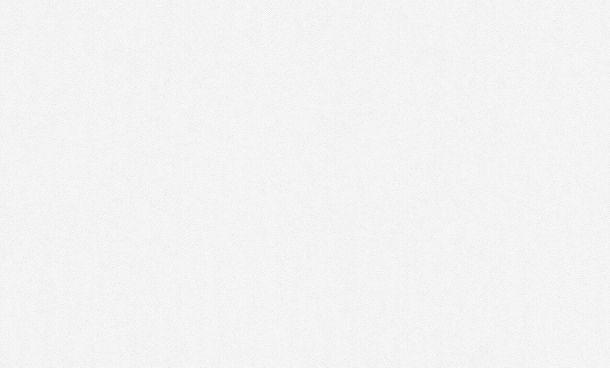 Tapete Vlies überstreichbar Struktur Groß-Rolle Meistervlies 3059-16