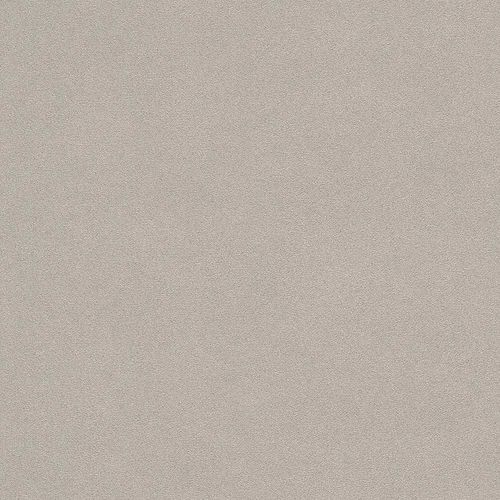 Tapete Vlies Beton-Optik taupe Rasch 479409