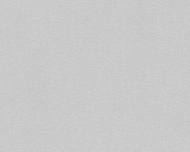 Wallpaper plain textured light grey AS Creation 30486-6 online kaufen