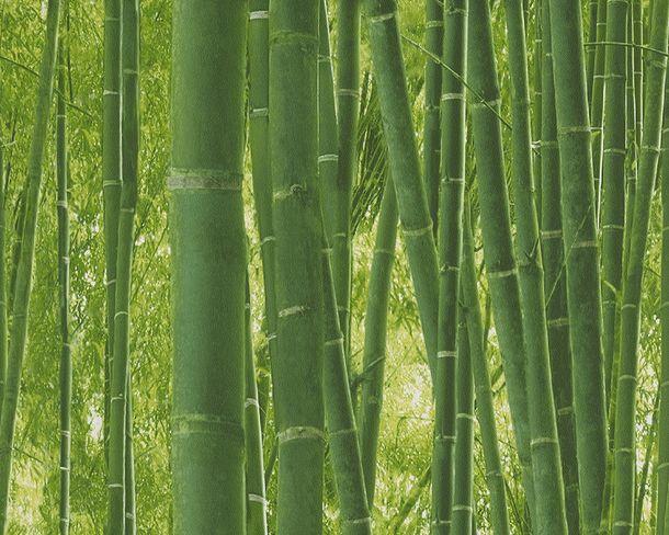 Tapete Bambusmotiv Natur Floral grün 9387-18