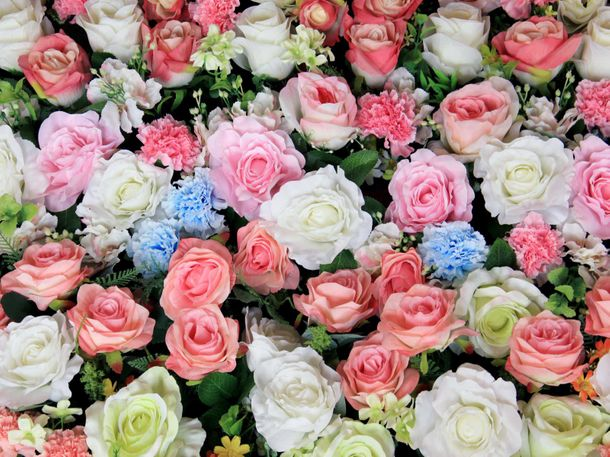 XXL Photo Wallpaper Mural Flower Floral Roses Nature