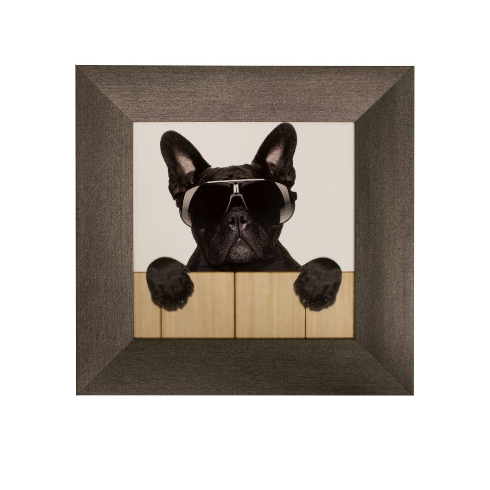3er set bilder gerahmt hunde cool sonnenbrille 23x23cm. Black Bedroom Furniture Sets. Home Design Ideas
