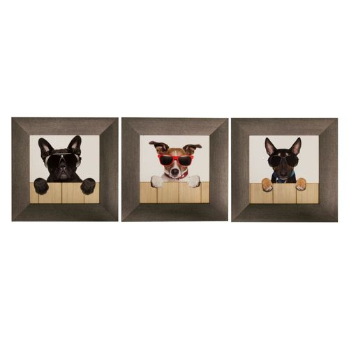 Set of 3 Framed Murals Dogs Cool Sunglasses 23x23cm online kaufen