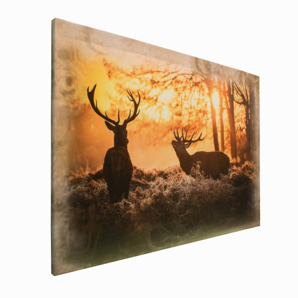 bild wandbild leinwand bild keilrahmen hirsch wald sonne 78x118cm ebay. Black Bedroom Furniture Sets. Home Design Ideas