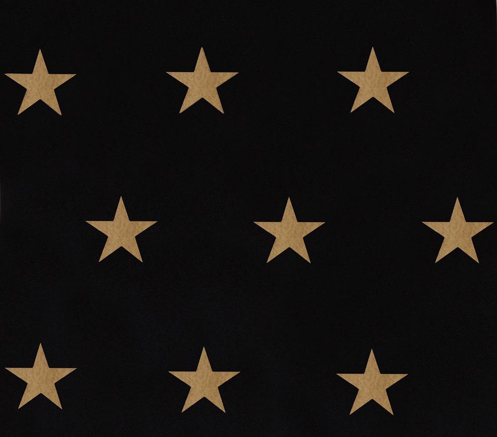 Tapete vlies homefacto ri sterne schwarz gold glanz 34760 4 - Tapete schwarz gold ...