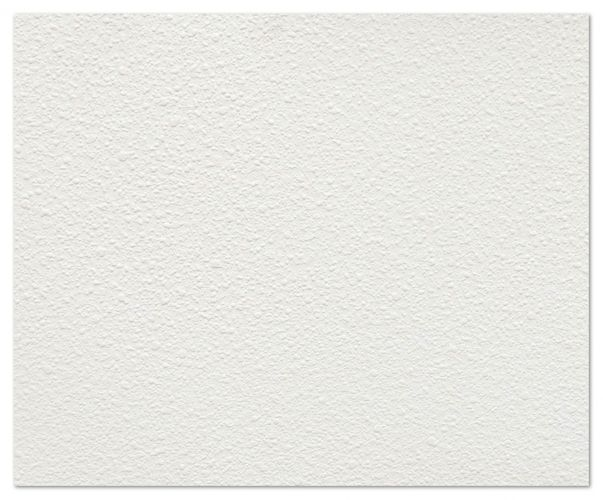 Wallpaper non-woven Marburg 73202 white XXL 17m