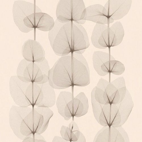 Wallpaper leaf nature cream beige AS Creation 34245-1