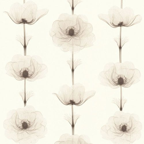 Wallpaper bloom nature cream brown AS Creation 34273-2