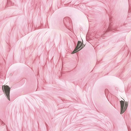 Wallpaper flamingo birds pink Rasch 803211 online kaufen