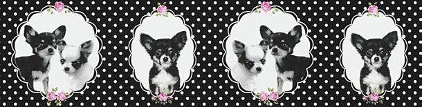 Tapeten Borte Kinder Hund Chihuahua schwarz weiß 35850-1 online kaufen