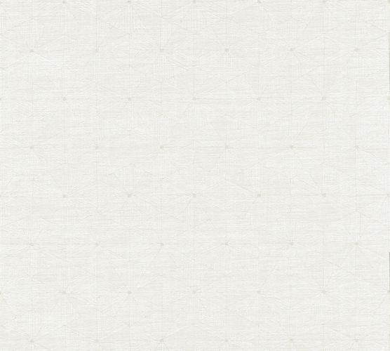 Vlies Tapete Grafik Dekor grauweiß AS Creation 35895-2 online kaufen