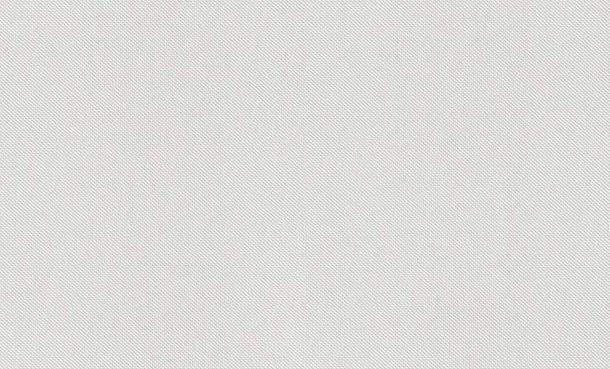 XL Vlies Tapete Überstreichbar Großrolle Textil Fein 179927