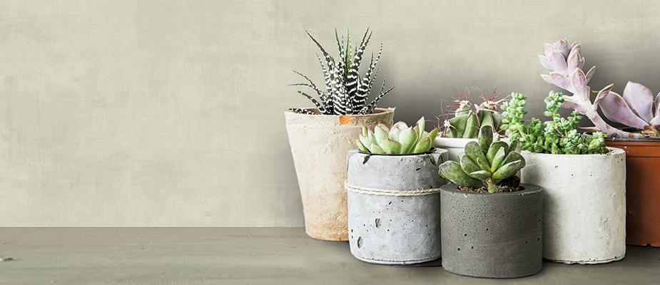 vlies tapete betonoptik hellgr n rasch textil 061017. Black Bedroom Furniture Sets. Home Design Ideas