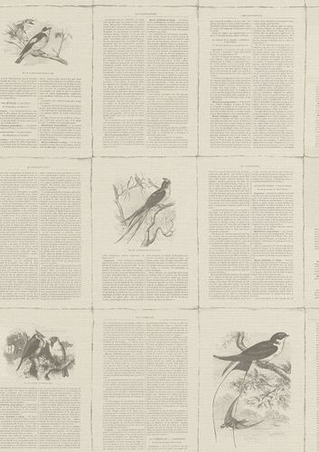 Wallpaper non-woven vintage book taupe Rasch 401615 online kaufen