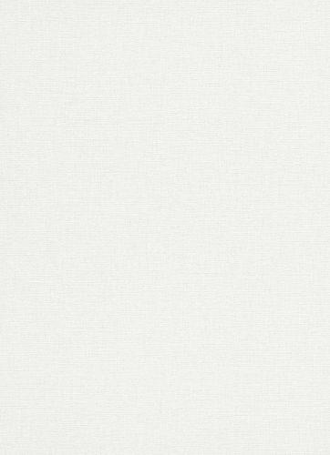 Vlies Tapete Design Meliert weiß grau Erismann 5414-01