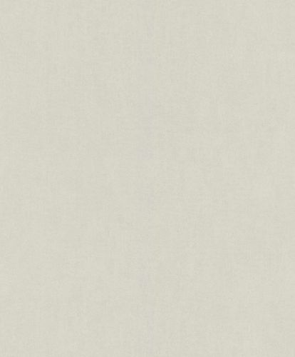 Kid's Wallpaper Plain Plaster Look grey Rasch 247114 online kaufen