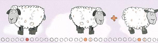 Kinderbordüre Schafe Zahlen rosa weiß Jonas Kötz 46519 online kaufen