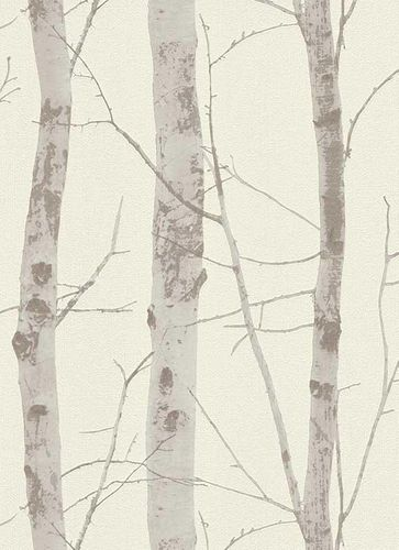Non-Woven Wallpaper Birch white taupe Instawalls 5433-38 online kaufen