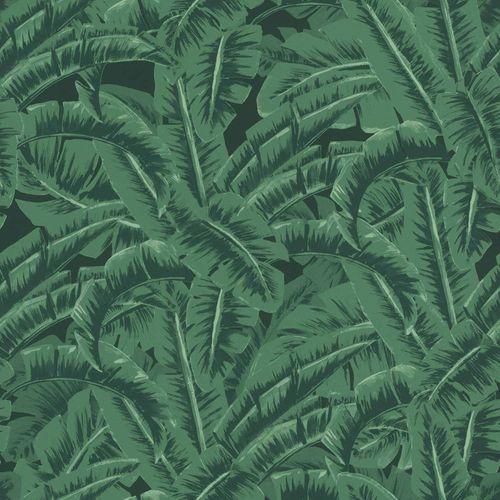 Vliestapete Dschungelwald grün schwarz 038985 online kaufen