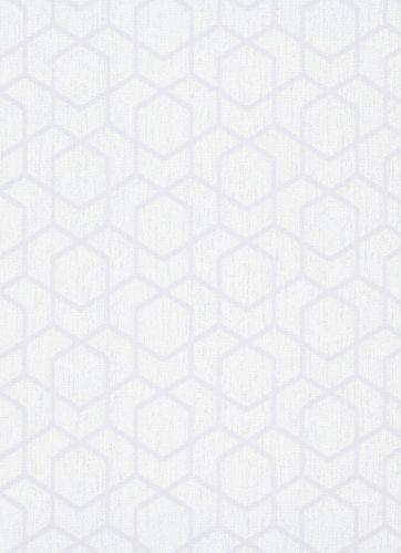 Wallpaper 10068-31 - graphic white grey