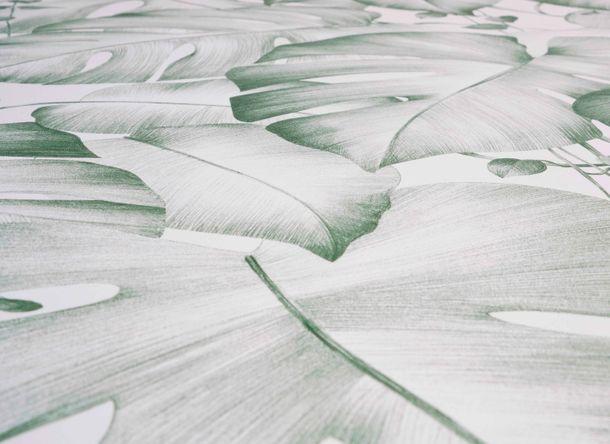 Tapete Selbstklebend weiß grün Dschungel Blätter 368391