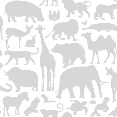 Wallpaper non-woven Kids 139054 animal species white grey online kaufen