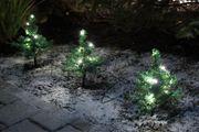 Beleuchtete Tannen als Weihnachtsdekoration für den Garten