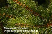 B-Ware - Künstlicher Weihnachtsbaum Bristlecone 180 cm LED und Flash