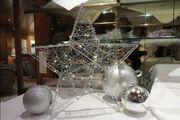 B-Ware Weihnachtsstern 58 cm 40 LED aus Draht batteriebetrieben