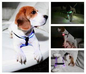 MAILUX LED Hundegeschirr Weiß Gr S bis 7Kg versch. Leuchtmodi – Bild 5