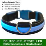 MAILUX LED Hundehalsband blau Gr L ab 15 Kg versch. Leuchtmodi 001