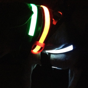 MAILUX LED Hundehalsband grün Gr M 7-15Kg versch. Leuchtmodi – Bild 3