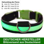 MAILUX LED Hundehalsband grün Gr M 7-15Kg versch. Leuchtmodi 001