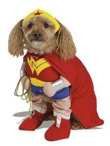 Hunde Kostüm Wonder Woman