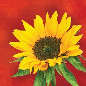 16 kleine Servietten Sonnenblume