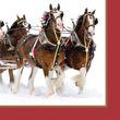 16 kleine Servietten Pferdekutsche im Schnee