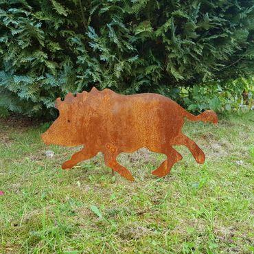 Wildschwein – Bild 3