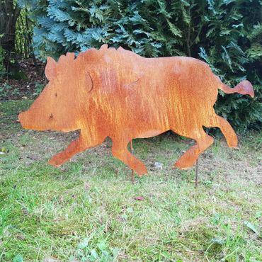 Wildschwein – Bild 2