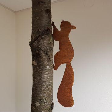 Eichhörnchen laufend – Bild 1