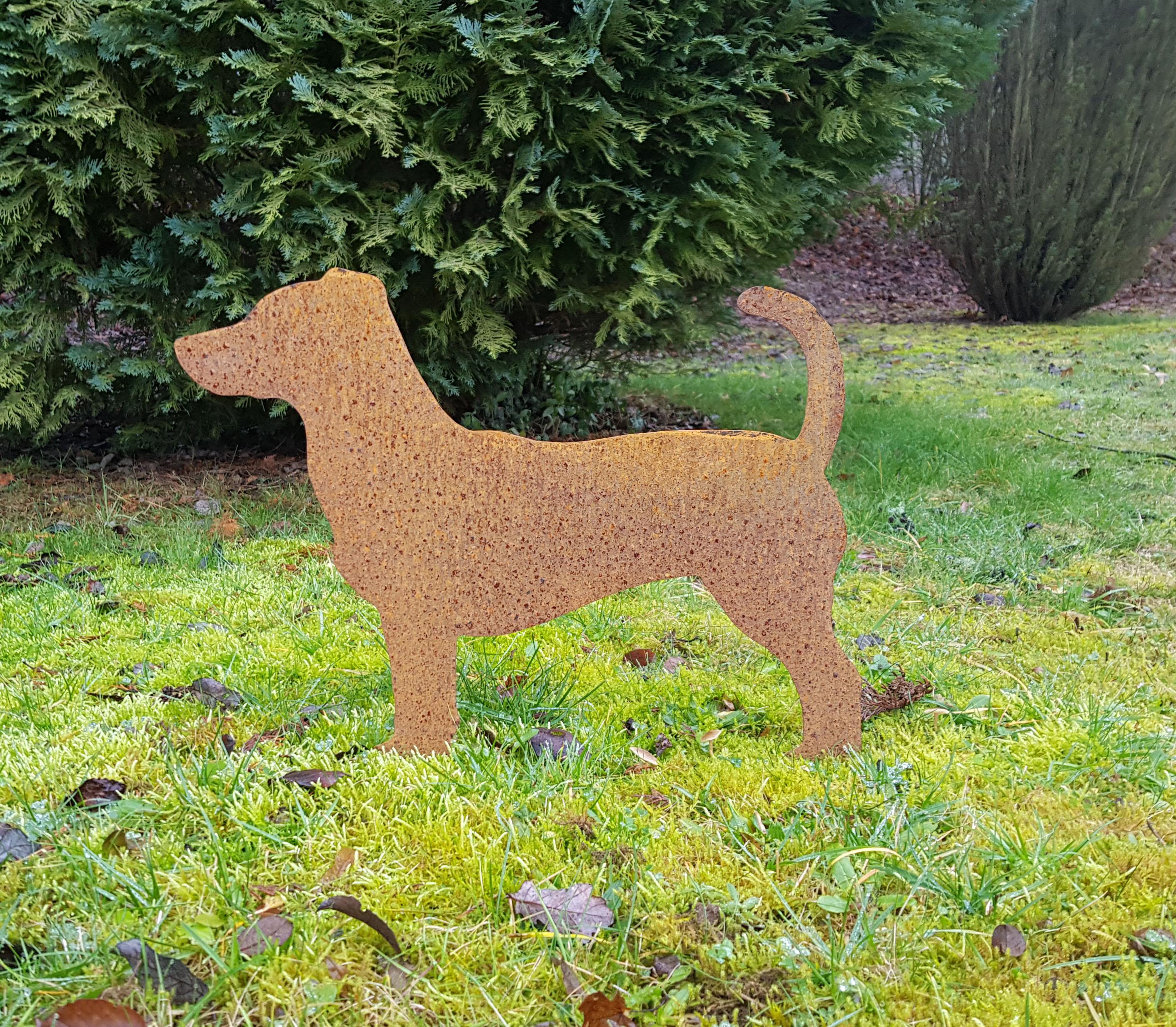 Jack Russell Terrier Jack Russell Terrier  Glanzwerk Farbe