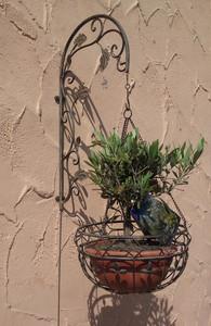 Blumenampel mit Wandhalter Hängeampel Pflanzkorb Wandampel Paris braun – Bild 5