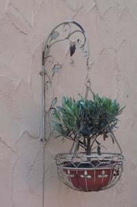 Blumenampel mit Wandhalter Hängeampel Pflanzkorb Wandampel Paris weiss – Bild 1