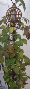 Rankstab Spalier Rankhilfe Rosenstab Obelisk Florio roh / Rost  – Bild 1