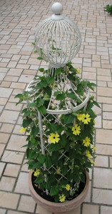 Rankstab Rankhilfe Pfosten Obelisk Wells 135cm Weiß – Bild 1