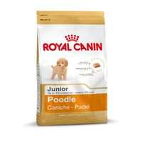 Royal Canin Breed Poodle Junior 500g